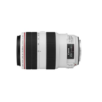 Canon Objectif EF 70-300mm f/4-5.6L IS USM