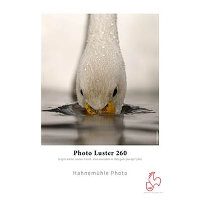 "Hahnemühle Photo Luster 260g Rlx 44"" 30m"
