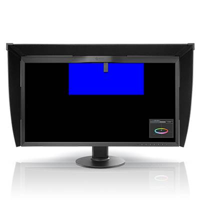 Eizo Ecran ColorEdge CG318 IPS 4K 32""